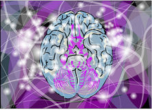 Brain activity Stock Images