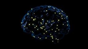 Brain activity stock video
