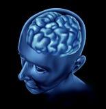 Brain activity intelligence. Human brain representing intelligence and neurological activity royalty free illustration