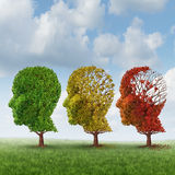 Brain Aging Images stock