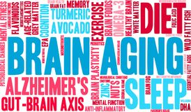 Brain Aging Word Cloud Photographie stock libre de droits