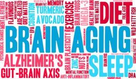 Brain Aging Word Cloud illustration de vecteur