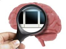 Brain Analyzed humano com instantâneos polaroid de ampliação das memórias dentro do isolado imagem de stock