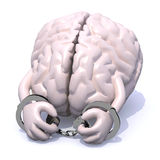 Brain with arms, legs and handcuffs Royalty Free Stock Photo