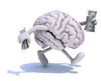 Brain with arms and legs run away with dollar notes on hands Royalty Free Stock Image