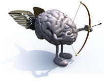 Brain with arms, legs, wings, bow and arrow Stock Photography