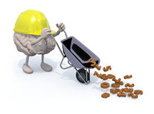 Brain with arms, legs and workhelmet carries a wheelbarrow numbe Stock Photos