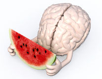 Brain with arms and a watermelon slice on hands. Human brain with arms and a watermelon slice on hands, 3d illustration Stock Images