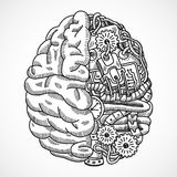 Brain as processing machine. Human brain as engineering processing machine sketch concept vector illustration Stock Photography