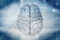 Brain Background Royalty Free Stock Photography