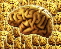 Brain Background. A background made out of human brains. Good for mind and thought concepts Royalty Free Stock Images