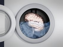Brain being washed in washing machine. 3D illustration Stock Photos