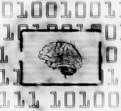 Brain and binary code. Illustration of the binary code and brain on abstract screen Royalty Free Stock Photos