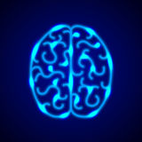 Brain from blue neon lines vector background Stock Photography