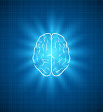 Brain blueprint Royalty Free Stock Image