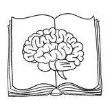 Brain with book.  illustration Stock Image