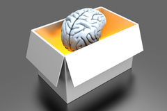 Brain in a Box Stock Photography