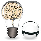 Brain in a bulb Royalty Free Stock Photos