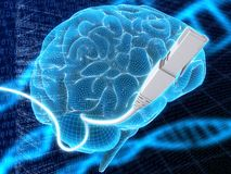 Brain and cable Royalty Free Stock Photography