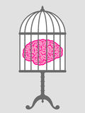 Brain in cage Royalty Free Stock Photo