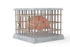 The brain in cage.3D illustration. The brain in cage. 3D illustration Stock Image