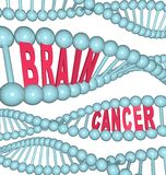 Brain Cancer Words in DNA Strand Royalty Free Stock Photos