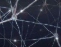 Brain Cells Royalty Free Stock Photography