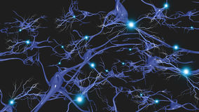 Brain cells. With electrical firing Stock Photography