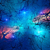 Brain cells. Nervous system abstract with neurons and synaptic cells Stock Photography