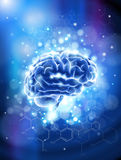 Brain & chemical formulas Royalty Free Stock Images