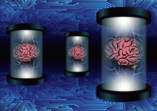 Brain circuit data transfer power concept. Brain power data transfer in abstract concept by electronic circuit and glass tubes Stock Photography