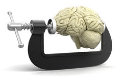 Brain in clamp (clipping path included) Stock Photos