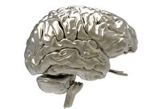 Brain with clipping mask. Metallic brain on white background with clipping mask Stock Photos