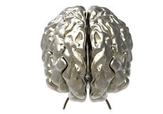 Brain with clipping mask Royalty Free Stock Image