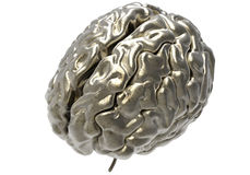 Brain with clipping mask. Metallic brain on white background with clipping mask Royalty Free Stock Photo