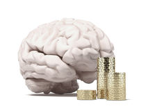 Brain and coins Stock Photography