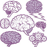 Brain Collection Stock Images