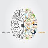 Brain Concept Fotografia Stock