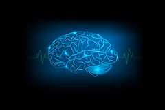 Brain Concept of blue background Royalty Free Stock Photos