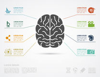 Brain concept Royalty Free Stock Images