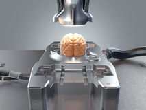 Brain Conceptual illustration vector illustration