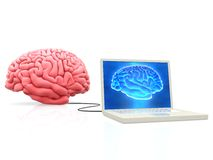 Brain connected to a laptop Royalty Free Stock Images