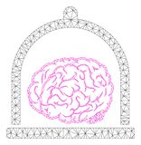 Brain Conservation Polygonal Frame Vetora Mesh Illustration ilustração royalty free