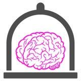 Brain Conservation Raster Icon ilustração royalty free