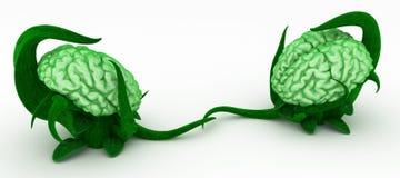 brain contact plant иллюстрация вектора