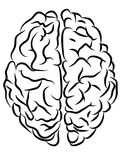 Brain contours. Vector black and white brain contours, Cartoon style stock illustration