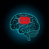 Brain with convolutions associated to the knot Stock Photo