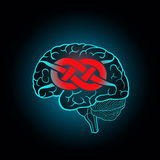 Brain with convolutions associated to the knot Royalty Free Stock Image