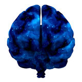 Brain cosmos isolated on white 3d rendering. Brain cosmos isolated on white. 3d rendering Stock Photos