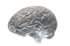 Brain covered with dust Royalty Free Stock Image